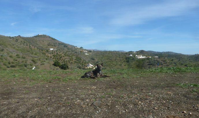 Auszeit in den Bergen Andalusiens